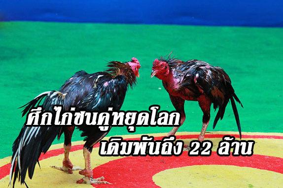ไก่ชน 22 ล้าน